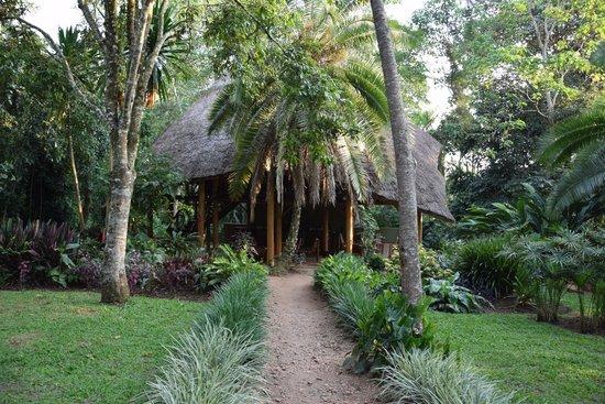 Kibale Forest Camp: Main building