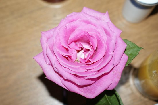 The Blacksmiths Arms: Rose