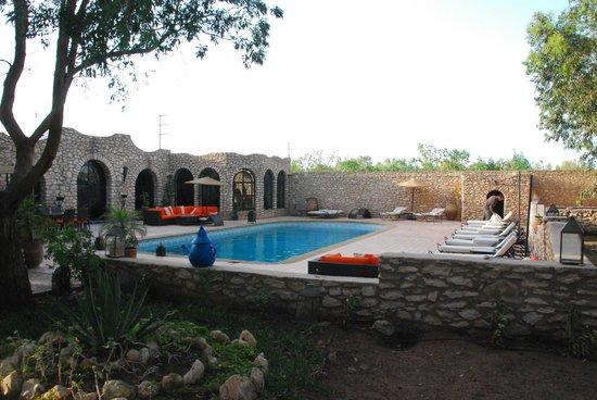 Villa Amaryllis : Piscine