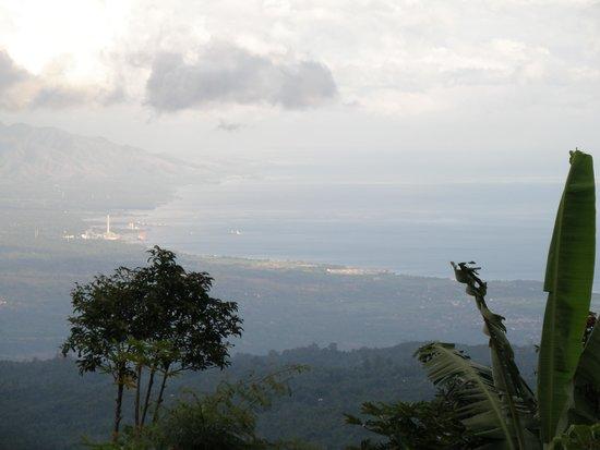Munduk Moding Plantation : uitzicht vanuit de infinity pool