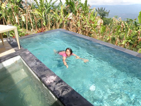 Munduk Moding Plantation: pool met jacuzzi