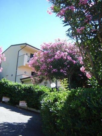 Hotel Santa Lucia: Отель и местность
