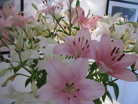 Albergaria do Calvario: flowers