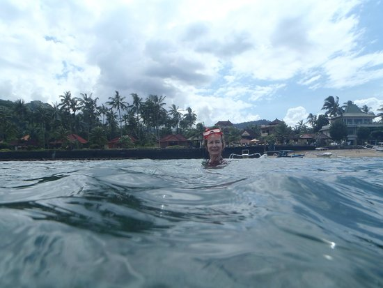 Bali Shangrila Beach Club: Fantastic opportunity to snorkel right in front of the hotel