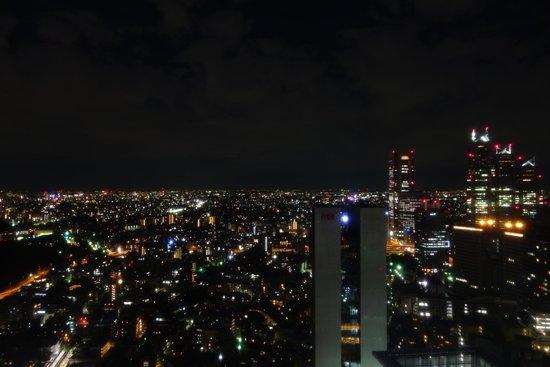 Hotel Century Southern Tower: astonishing view