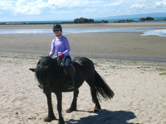 Maidens, UK: This wee horse is called Rosie, behind is the beach we cantered and galloped on.
