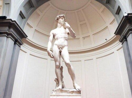 Accademia di Belle Arti (Galleria dell'Accademia): Statua del David  Toscana  Firenze