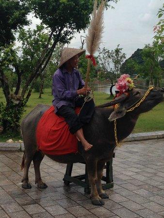 Hoa Lu - Tam Coc Day Tour: Hoa Lu