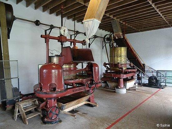 Plantações de Chá Gorreana (Gorreana Tea Plantation): Machine om theebladeren te verwerken