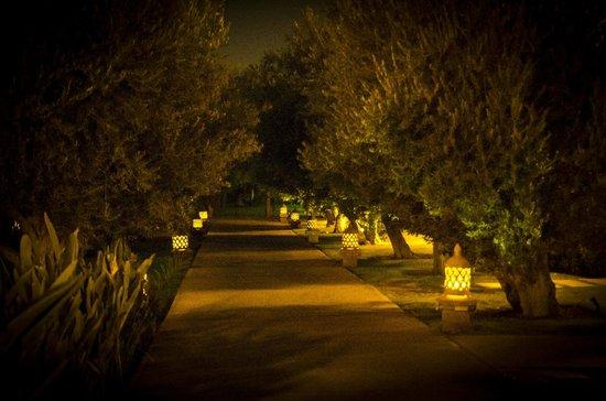 Kenzi Club Agdal Medina: Allée illuminée de lanterne vers les riads