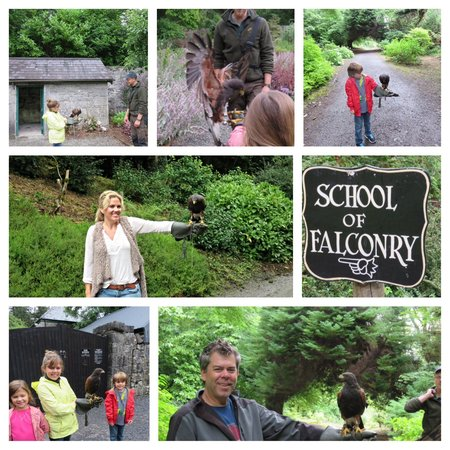 Ashford Castle: Falconry with Ed