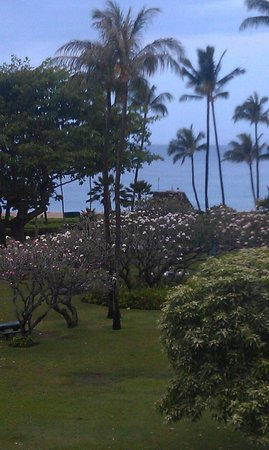 Kaanapali Beach Hotel: zoomed in view