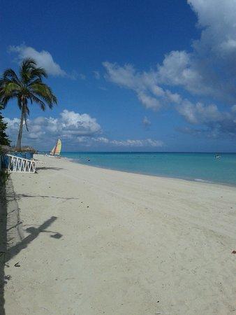 Hotel Palma Real: пляж отеля