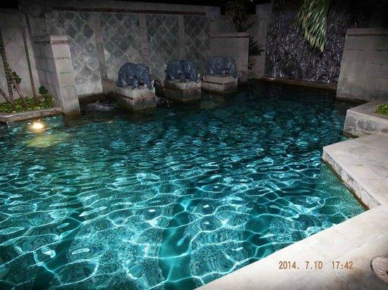 Majestic Grande Hotel: Pool