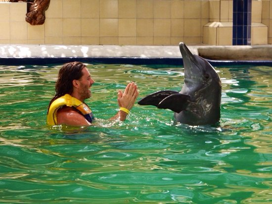 Melka Excelsior Dolphin & Wildlife Resort: Playing with Rocco :)