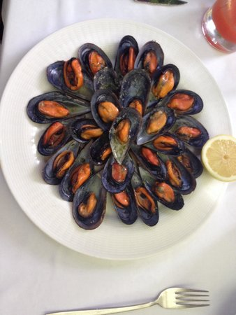 Restaurante El Jardin : Sea Shells