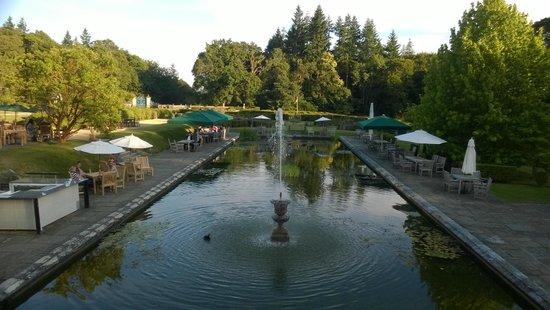 Rhinefield House Hotel: Koi pond