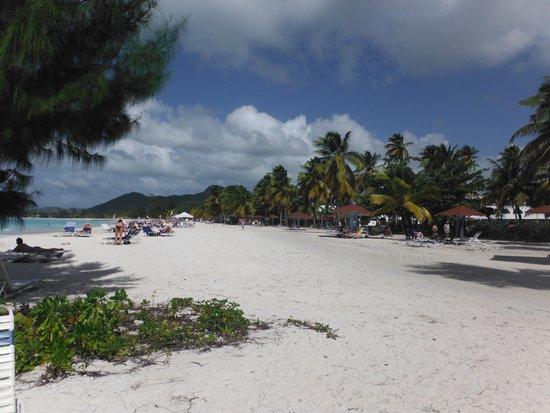 Jolly Beach Resort & Spa : Plage large
