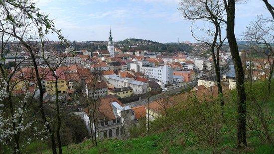 Trebic Shtetl: from the hill