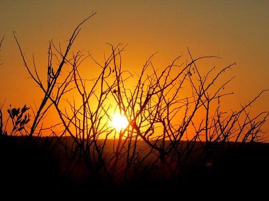 Springbok Lodge: stunning sunset (again)