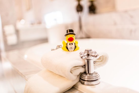 Image result for hastings hotels ducks