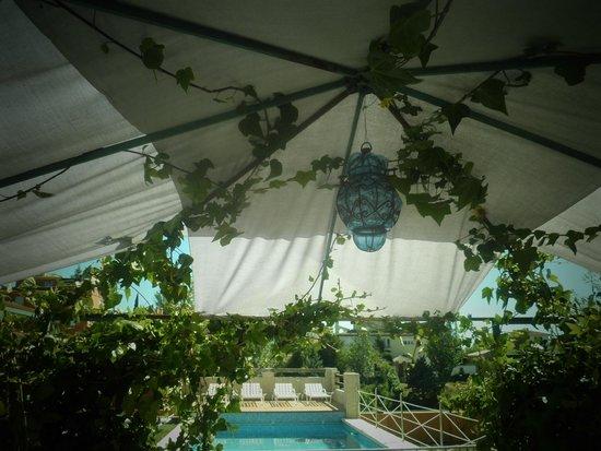 Casa rural laurel de la reina la zubia provincia de for Urbanizacion jardin de la reina granada