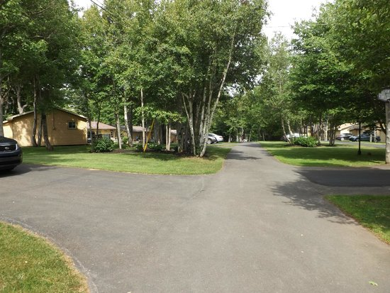 Cavendish Maples Cottages: Drive into the units