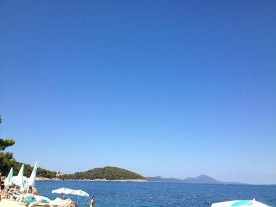 Vitality Hotel Punta: view