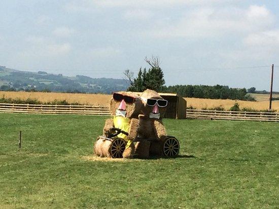 Mainsgill Farm: Tour de France Yorkshire style