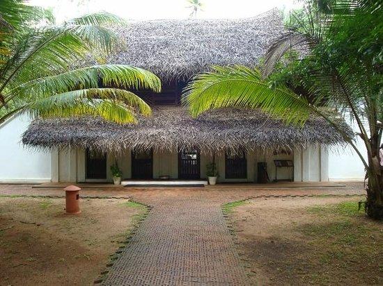Marari Beach Resort: Outdoors