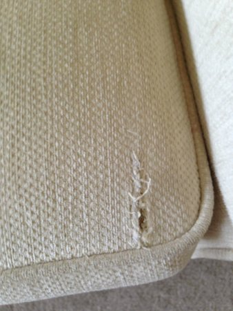 Dale Lodge Hotel: Executive room standards! Torn, dirty sofa in room