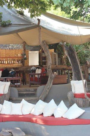 Tena Tena Camp: Bar and lounge