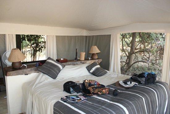 Tena Tena Camp: Inside our tent