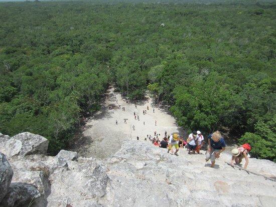 Ruines de Cobá : view from the top