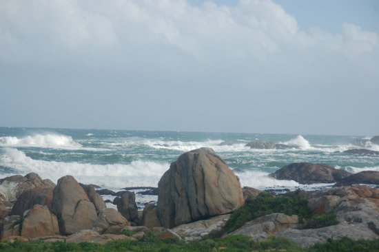 Cape Columbine Nature Reserve Tietiesbaai: The sea is just the most wonderful place on earth ...