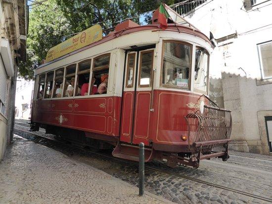 Tram 28: le rouge