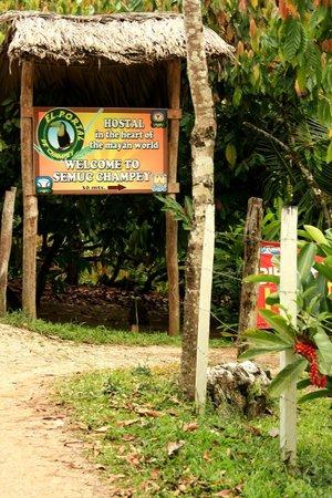 Hostal El Portal de Champey: La entrada