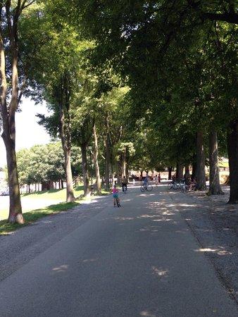 Una pedalata sulle Mura di Lucca