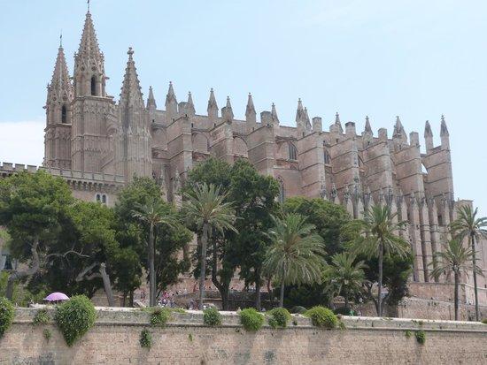 Palma Catedral Le Seu: Cattedrale