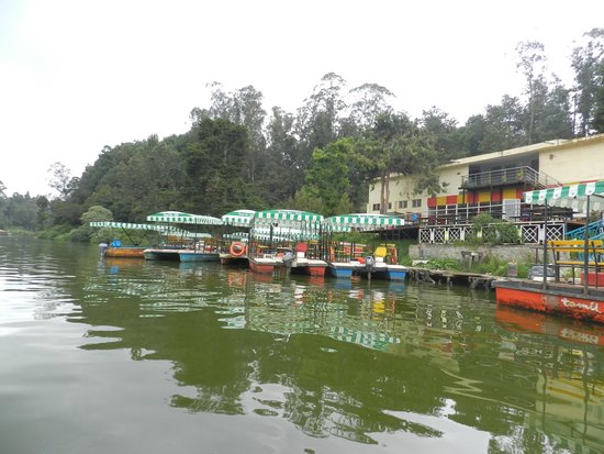 Ooty Lake: this is the green lake