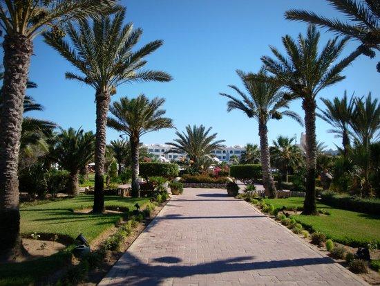 Hotel Palace Royal Garden : Les jardins