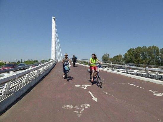 Centerbici: Coming back over the Alamillo Bridge/Puente del Alamillo.