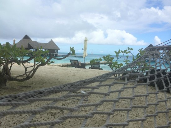 Conrad Bora Bora Nui : Just relaxing in a hammock
