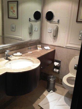 Ramada Plaza JHV Varanasi: Bathroom- has a hair dryer!