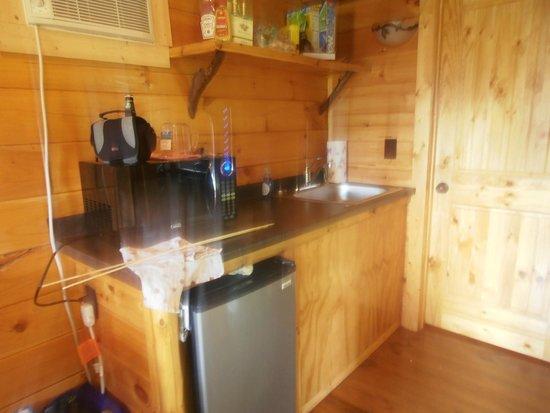 Branches of Niagara Campground & Resort : KItchette