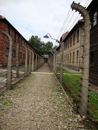 Escape2Poland - tours and transfers: Auschwitz