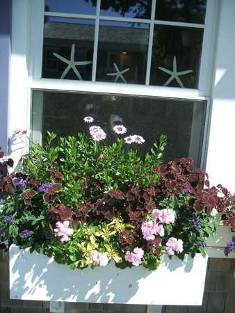 The Mattapoisett Inn: Beautiful flower boxes on the front porch!