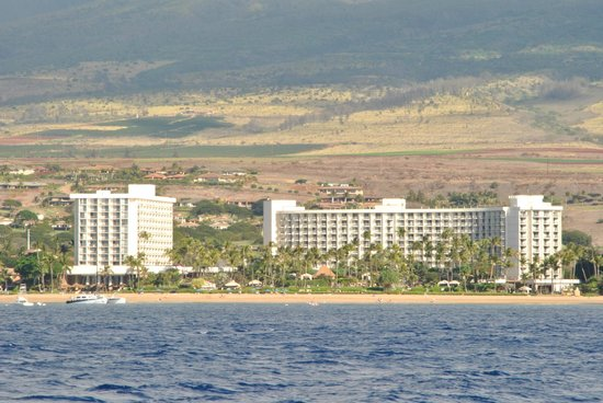 The Westin Maui Resort & Spa: Hotel from water