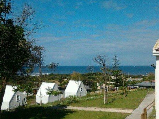 Parque de Campismo Municipal da Praia do Pedrogao: Vista do alpendre do Bungalow 3