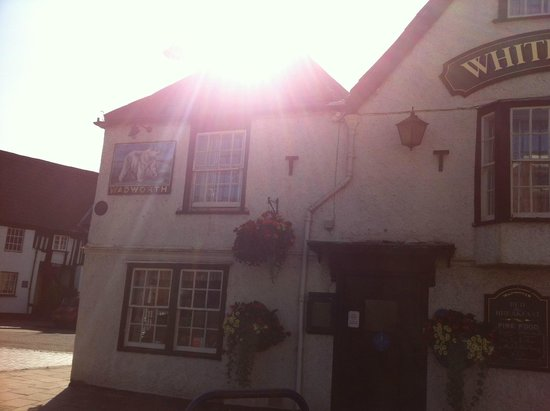 The White Bear: Outside in the sun